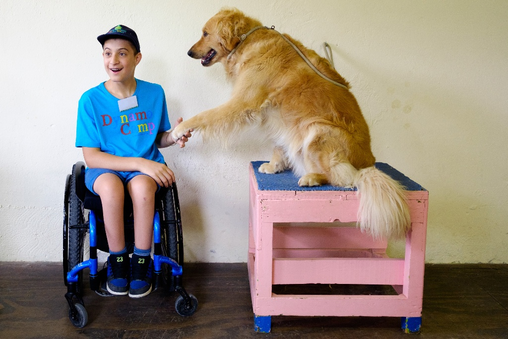 Camper happily shaking the paw of a therapy dog